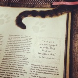 The Literary Muse – Your Cat magazine (June2015)
